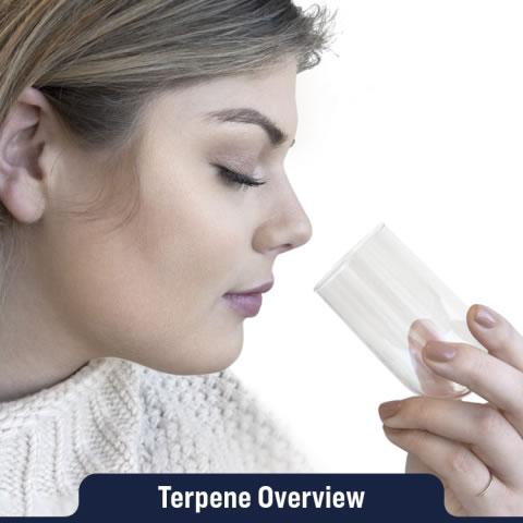 Terpene Overview